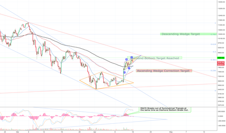 BTCUSD: BTC! Seer of the future? Or just a blind bull?