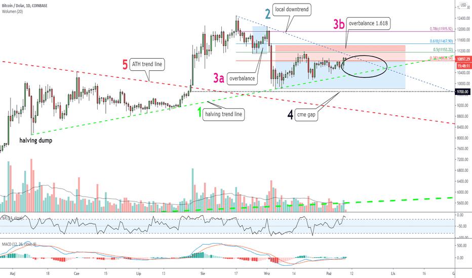 btc shorts tradingview