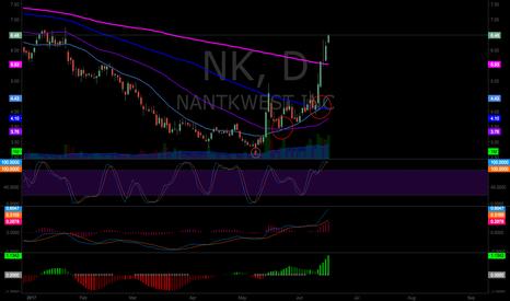 NK: NK Swing Setup