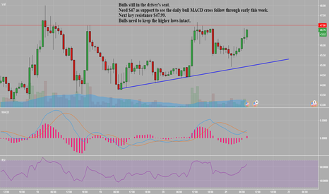 LTCUSD: LTC bulls still hold control on the Hourly