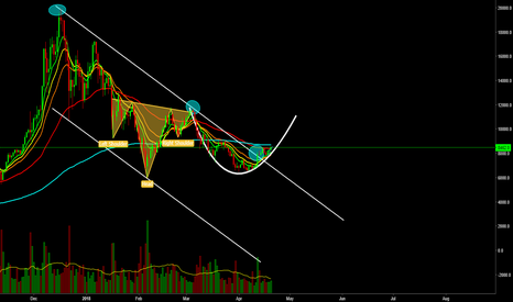 BTCUSD: It's Bulltime for Bitcoin! Read here what's happening