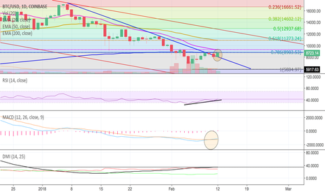 BTCUSD: BTC Market Update:  Dead Cat bounce or real rally?