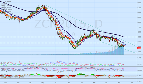 ZCN2015: CORN DOWNTREND WILL CONTINUE, BUT IT WILL END IF WATER SHORTAGE