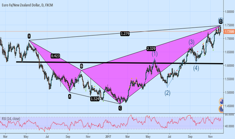 EURNZD: Beware of sharks!