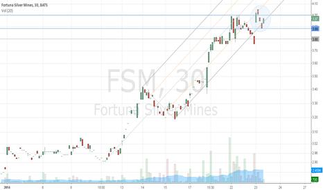 FSM: Bullish on Fortuna