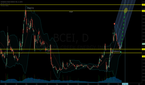 BCEI: good buy nice levels