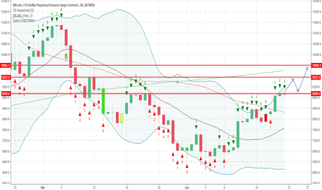 XBTUSD: BTC Long Term Bull Trend Has Started