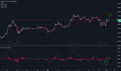 BCHBTC: BCHBTC Poses Lonely Gains