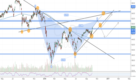 C: C Daily Chart.Long View , Bearish Gartley