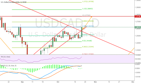 USDCAD: A minor pull back then will go upper