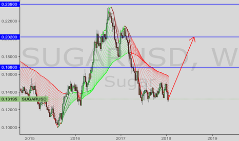 SUGARUSD: Sugar Raw—-long term
