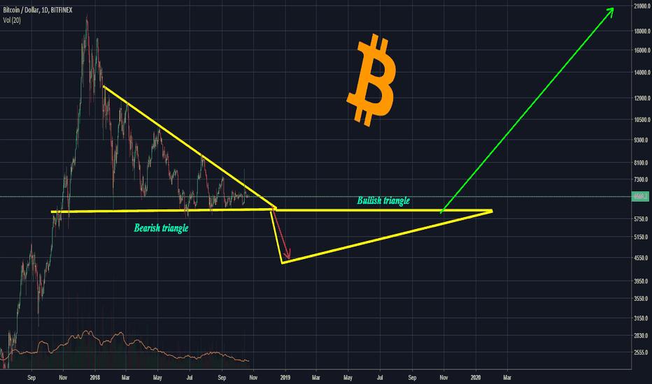 BTCUSD: The Future Of Bitcoin (2 years)