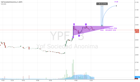YPF: Flag in short