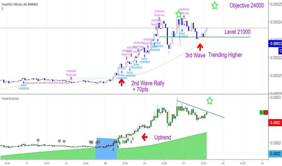 TUSDBTC: Bullish Next Wave 24000