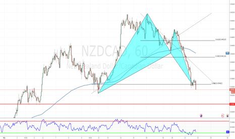 NZDCAD: Advance Bat Pattern Market now