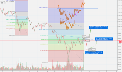 BTCUSD: BTC/USD 피보나치 반등과 과거차트 유사성을 보고 연습.