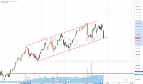 AAPL: Apple Inc. (NASDAQ:AAPL) Nearing Bending Brake Down Point