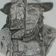 ilustrator