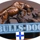 BullsDoc