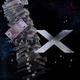 WealthXNetwork