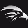 Falcon_boy