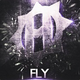 Heist_FlyZ