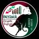 Paydar