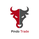 Pindo-trade