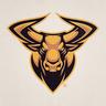 S1mple_Bull