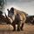 RhinoAlerts