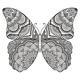 Butterfly2020