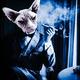 Monsieur_Gato