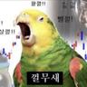 korea_student