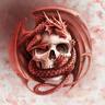 Dragon_Forex