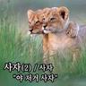 yoonseung