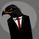 thehawk_trader