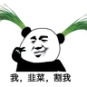 Chives_Root