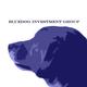 BlueDog_Investment
