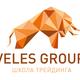 VelesGroup