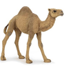 CameLone