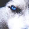 Wolfieinstein