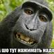 DmytroIzhko