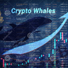 Whales_of_Crypto
