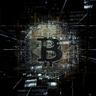 CryptoWhaleSignals14