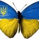 Ukrainian_guy