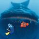 whaleschow