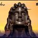 yogi_sharma_elliottician