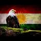 KurdFX