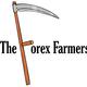 TheForexFarmers