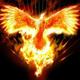 PhoenixTamilTraders